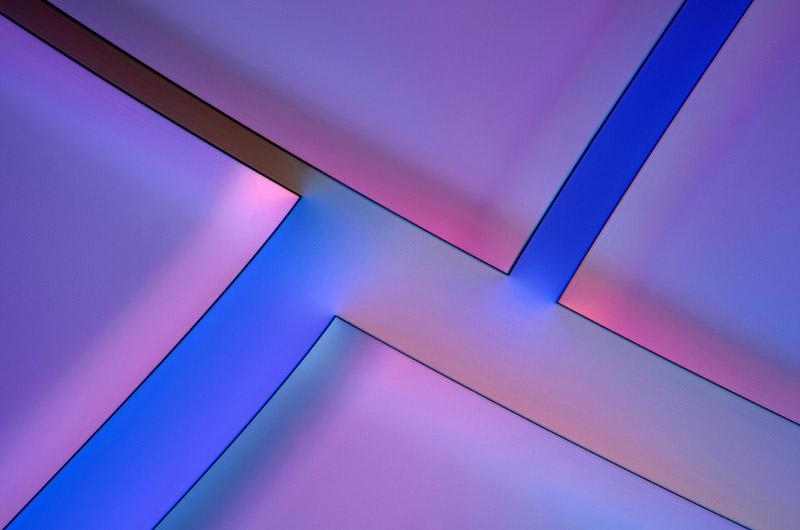 kwas-taninowy-mikrofotografia-3