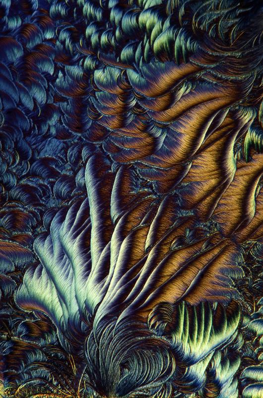lek-na-odciski-mikrofotografia-10