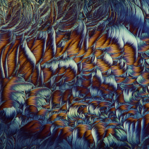 lek-na-odciski-mikrofotografia-4