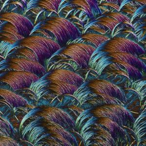 lek-na-odciski-mikrofotografia-9