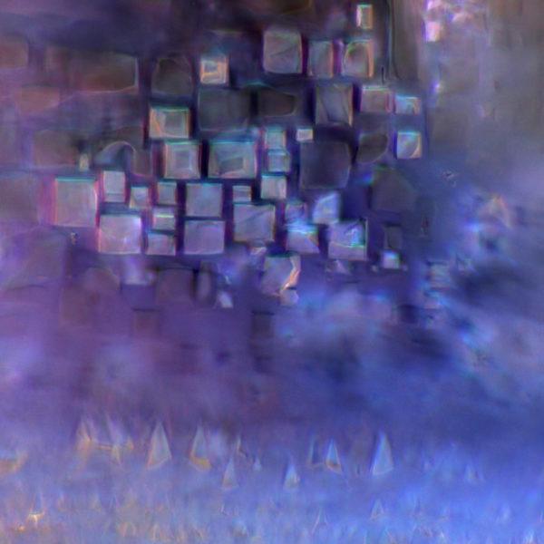 odczynnik-do-badania-wody-mikrofotografia-4